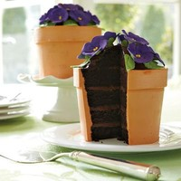 Perfect Endings Blooming Flower Pot Cake | Williams-Sonoma