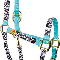 Black Zebra with Teal Polka Accent High Fashion Horse Halter - Made in the USA at RedHauteHorse.com