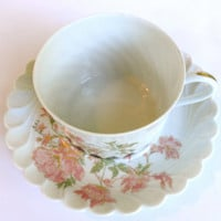 Haviland Limoges Dumont Teacup France