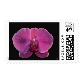 Simply Orchids US Postage