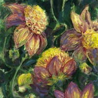 Yellow and Pink Dahlias in Oil and Ink