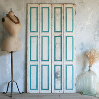 One of a Kind Vintage Petite Doors