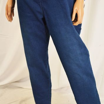 Style&Co Women's Blue Mid Rise Curvy-Fit Pull-On Jeggings Pants XL