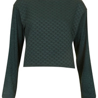 Snake Textured Crop Sweat - Hoodies & Sweatshirts - Tops - Clothing - Topshop USA