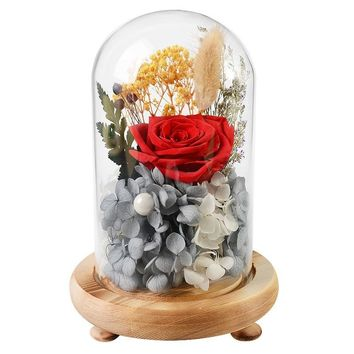 Beauty And The Beast Wedding Home Decoration Valentine's Day Glass Cover Fresh Preserved Rose Flower Beautiful  Red Pink Rose