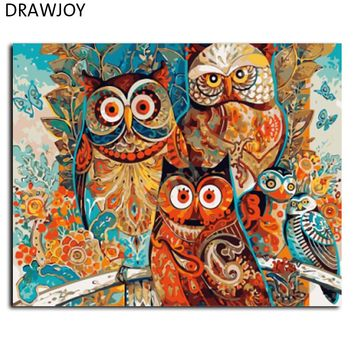 DRAWJOY Framed Pictures DIY Oil Painting By Numbers  40x50cm