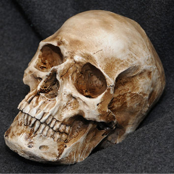 P-Flame Antique Imitation Human Skull Replica Resin Model Medical Realistic lifesize 1:1 Handmde Resin Crafts Home Decoration