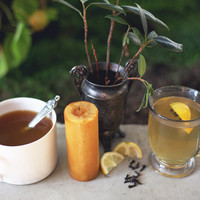 3 Fall Hot Toddy Recipes - Free People Blog