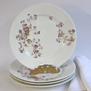 Vintage French Limoges Plates, Handpainted