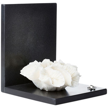 Open Coral & Sterling-Silver Bookend, Bookends