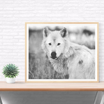 Wolf Photography Printable, Black And White Forest Wall Decor, Textured Photography, Wildlife Wall Art, Wilderness, Travel, Black Wall Decor