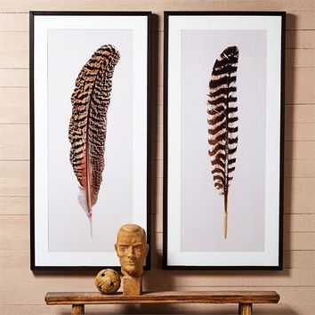 Feather Wall Art Large - Set of 2
