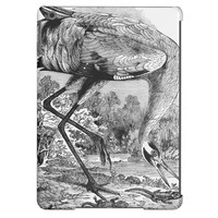 Vintage Bird Illustration | BW | Whooping Crane iPad Air Cases