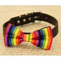 Rainbow dog bow tie attached to collar, Colorful bow tie, pet accessory, Gift