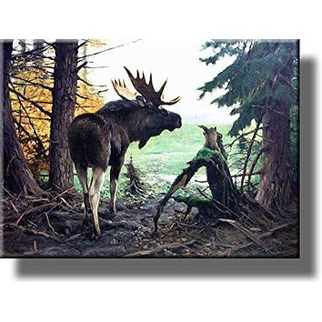 Moose in Forest Picture on Acrylic , Wall Art Décor, Ready to Hang!