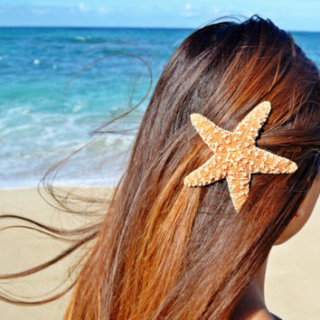 "Starfish 3'' to 4"" Hair Clip/Barrette"