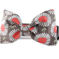 Daisies in Taupe Bow Tie Dog Collar - Dog bowtie collar - Dog Bow Tie with Daisies - dog wedding attire - Flower bow tie