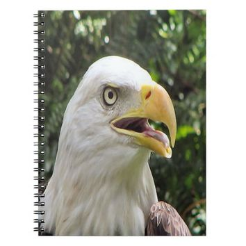 Bald Eagle Spiral Photo Notebook