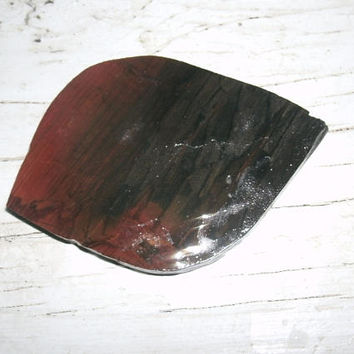 NATURAL Petrified Wood Slice, smoothed and shaped with grinder, pre cut for cabbing, DIY agatized wood supply  jewerly supply, craft stones