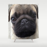 Pug Hi Shower Curtain by Veronica Ventress