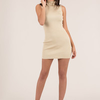High There Ribbed Turtleneck Minidress