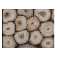 Captivating Tree Trunk Wooden Wall Art Decor, Multicolor