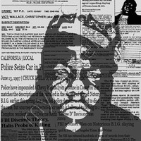 Notorious BIG biggie smalls 16X20 poster print