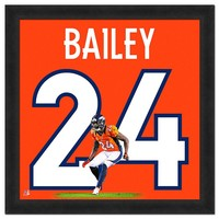 Denver Broncos Champ Bailey Framed Jersey Photo (Den Team)