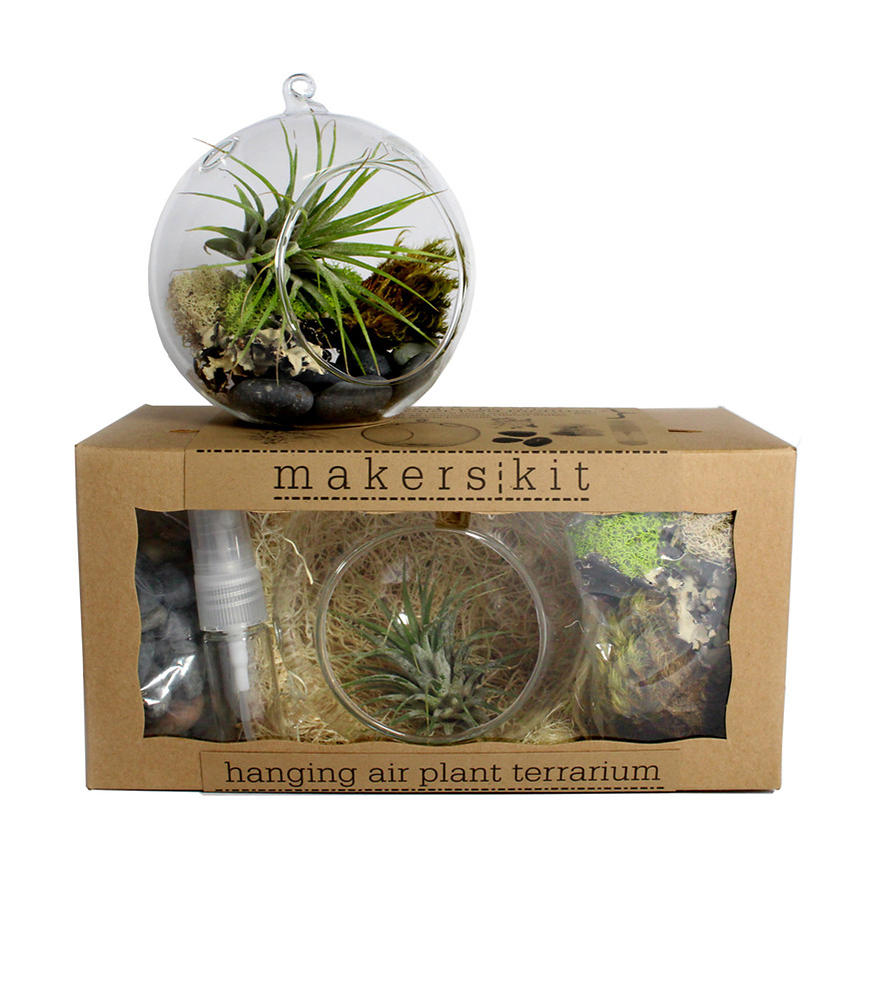 hanging air plant terrarium kit from scoutmob home. Black Bedroom Furniture Sets. Home Design Ideas