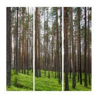 Lush Green Forest Scene Triptych Wall Art