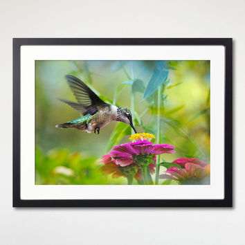 Hummingbird Print With Frame, Nature Photography, Room Wall Art, Nature Art Decor, Framed Print