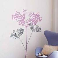 anise wall stickers by supernice | notonthehighstreet.com