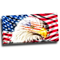 Land of the Free Eagle Canvas Wall Art Print
