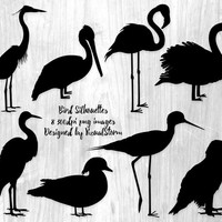 Bird Silhouettes Clipart, Bird Clipart, Eagle, Swan, Pelican, Flamingo, Duck, Heron, Egret, Heron, Scrapbook Animal Clipart, Digital Birds