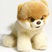 Girl's Gund 'Boo - World's Cutest Dog' Stuffed Animal