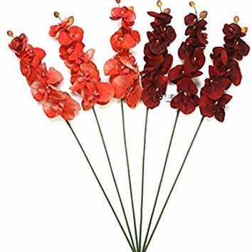 "Hosley Set of 6 Assorted 28"" Long, Orchid Phalaenopsis - Salmon & Burgandy. Great for Use Vases, for Home, Wedding, Spa & Special Occasions. O9"