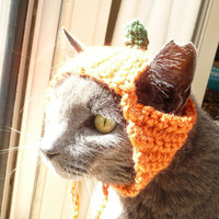 Halloween Costume for Cat CROCHET PATTERN Cat Costume Pumpkin Hat Fall Costume Cat Hat for Cat Wearing Hat Cat Photography Prop Orange Hat