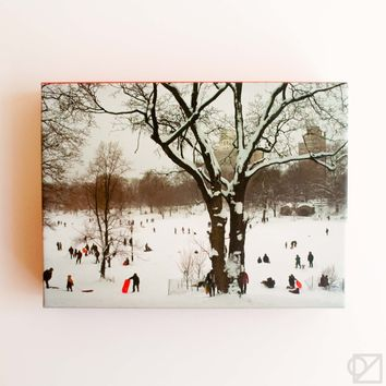 Prospect Park 20 Card Box Set
