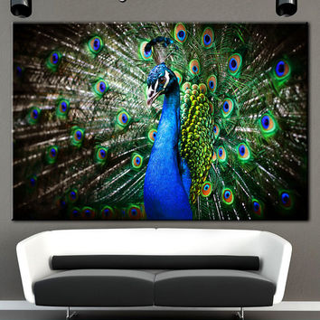 Peacock canvas, Peacoc print art, Wall decor, Canvas art, Extra Large Wall Art, Gallery wrapped, Wall art canvas, Multi panel art, Canvases