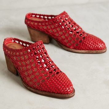 Jeffrey Campbell Armadillo Mules