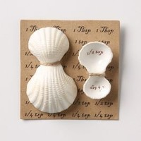 Shell Measuring Spoons-Anthropologie.com