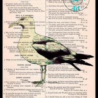 Seagull Drawing Beautifully Upcycled Vintage Dictionary Page Book Art Print