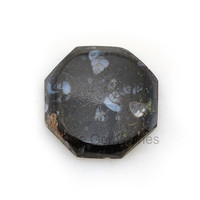 Genuine Colus Fossil Loose Gemstone A+ Grade Cabochons Beautiful Octagon 22x22 mm - 1Pcs., Freeform Cabochons, Freeform Gemstone