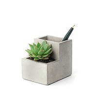 Concrete Planter & Pen Holder/Pot plante et Crayons Ciment : Vestibule…