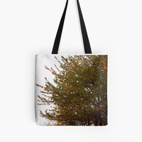 Apple Tree Tote Bag, Nature Bag, Photo Tote Bag, Grocery Tote, Reusable Grocery Bag, Fall Tote Bag, Farmers Market Bag, Tree Bag