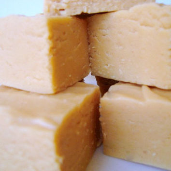 Julie's Fudge - PEANUT BUTTER - 12 PIECES (1 pound)