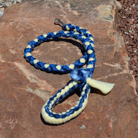 Braided Fleece Dog Leash, Blue and Yellow Dog Sport Leash