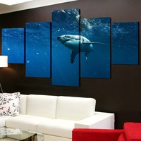 Sneaky Shark Canvas Set