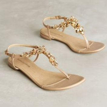 Raphaella Booz Genoveva Thongs Neutral