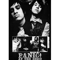 PANIC AT THE DISCO POSTER Group Cast Collage RARE 24X36